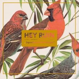 """HEY RUIN """"Irgendwas mit Dschungel"""" LP (+Download)"""