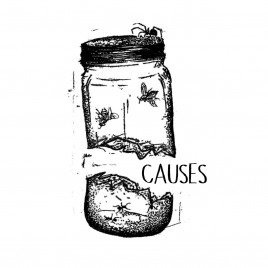 "CAUSES ""Demo"" Tape"